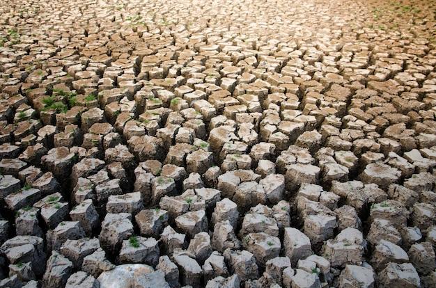 水不足の干ばつ効果