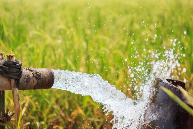 Поток воды из большой насосной трубы в рисовом поле в центре таиланда, фокус на трубе