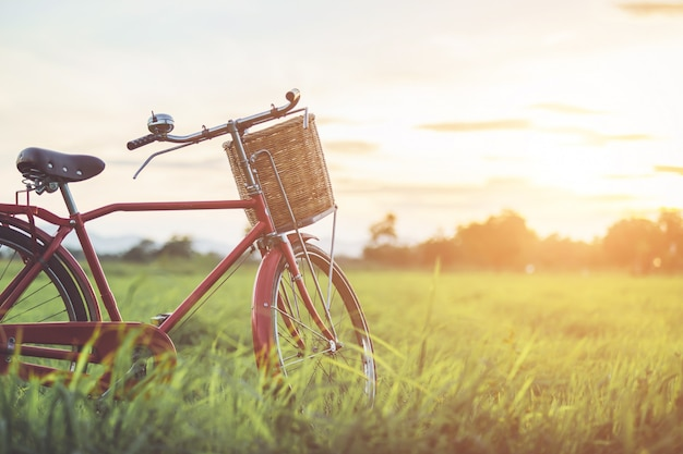 グリーンフィールドのレッドジャパニーズクラシックバイク