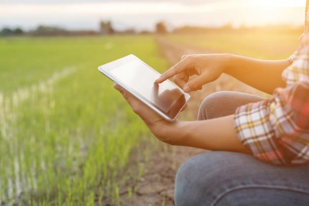 緑の田んぼでタブレットを使用してアジアの若い農夫
