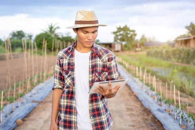 彼の有機農場でアジアのスマート農家持株タブレット。