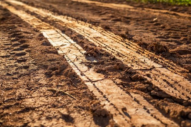 湿った土壌のホイールトラック
