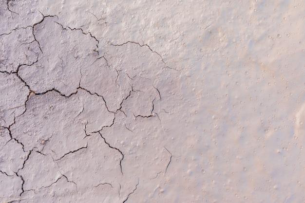 灰色の乾燥した土壌