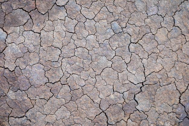 Серая сухая почва