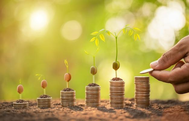 Монеты сложены с молодым зеленым ростком на вершине