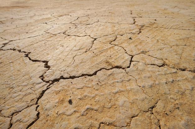 Текстура сухой потрескавшейся почвы