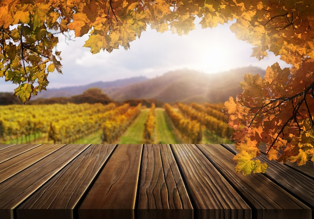 Деревянная таблица в ландшафте страны виноградника осени.