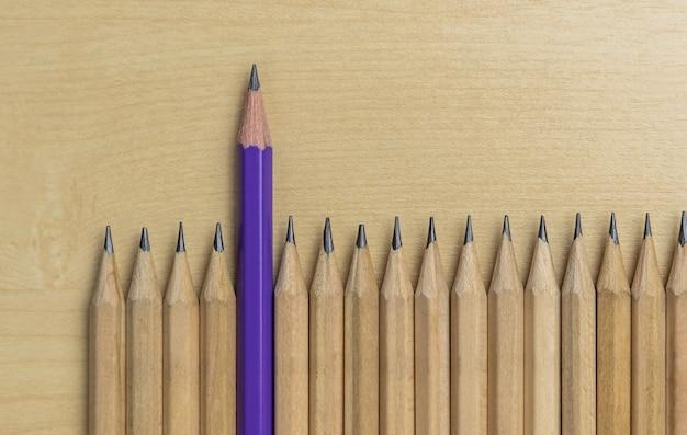 別の鉛筆の傑出したリーダーシップ概念を示しています。