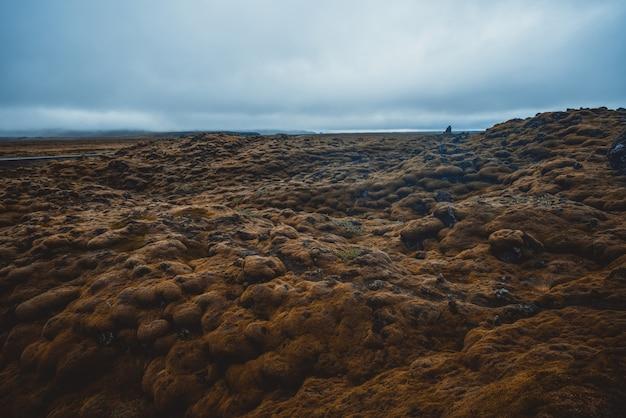 Поле вулканического пепла и лавы в исландии.