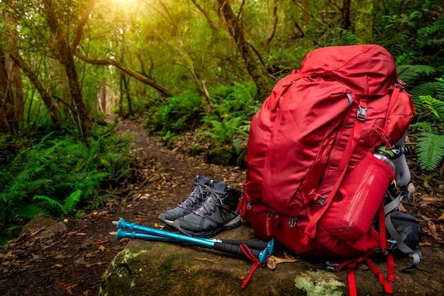 オーストラリアのタスマニア州のジャングルにあるハイキング用具セット。