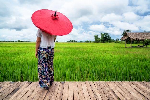 Путешественник женщины азиатский ландшафт поля риса.