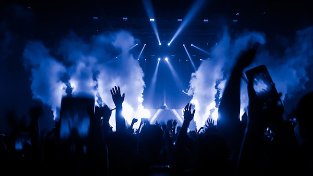 Люди на концерте