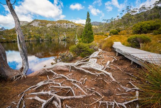 オーストラリアのタスマニアクレイドル山の風景。