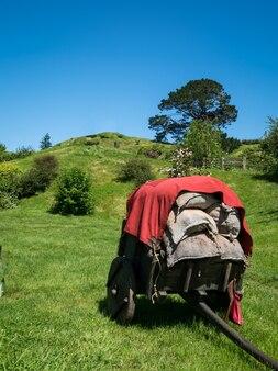 Сельский пейзаж летом. красивые старые сельскохозяйственные угодья и сельское хозяйство.