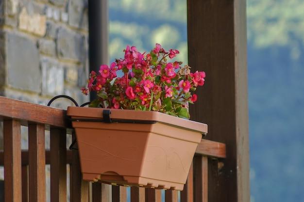 バルコニーから垂れた花の鍋