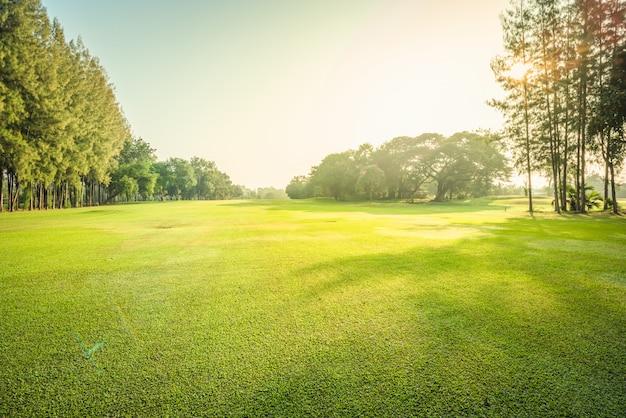 風景緑色のゴルフと朝の太陽光線の草原