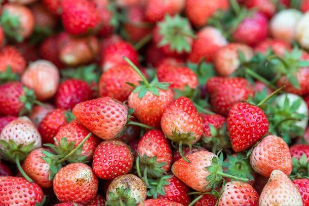 健康のために収穫された熟したイチゴ果実