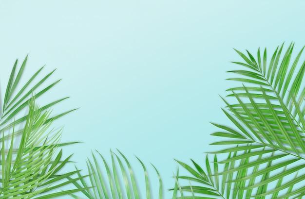 熱帯のヤシの葉は明るい青色の背景にある。最小限の性質。夏のスタイル。