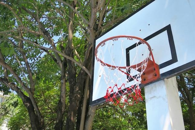 緑の木々とバスケットボールフープ。スポーツとオブジェクトの概念。