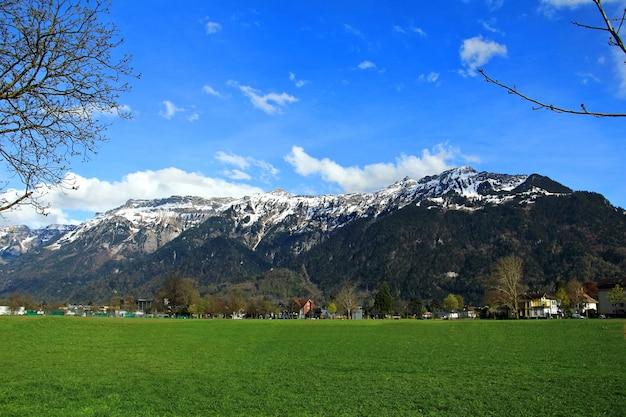 緑の芝生の美しい景色とスイスアルプスの前の造園。春のスイス、インターラーケン。