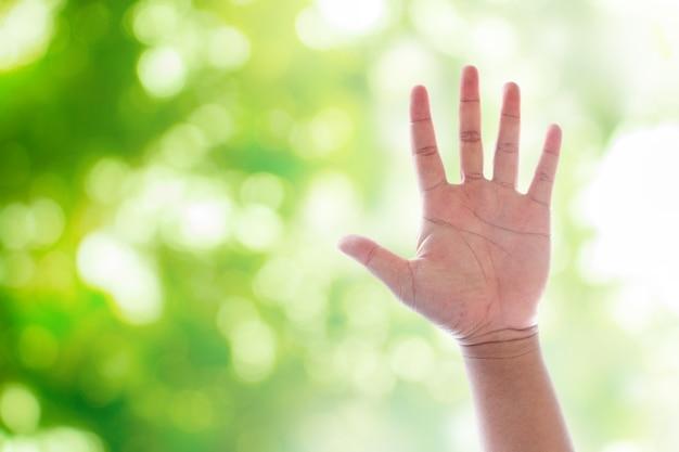 Поднимая руки на зеленый естественный боке размытый абстрактный фон