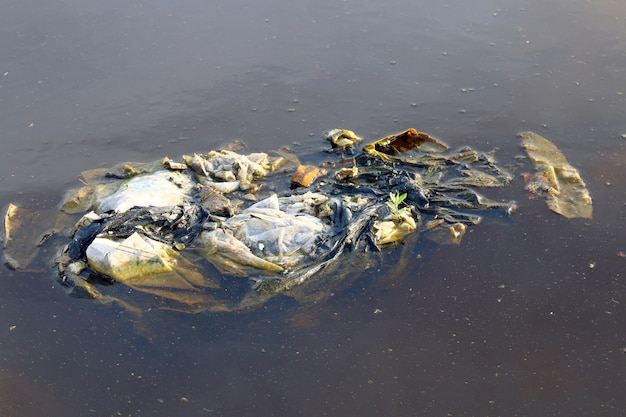 表面の水に汚れた廃ビニール袋、廃ビニール袋は分解しませんゴミを分解し、自然の生態学的な水を汚し、廃水
