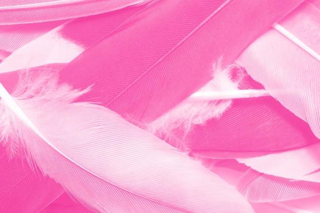 美しいピンクのマゼンタの羽テクスチャパターン背景