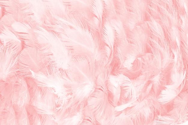 コーラルピンクの羽のテクスチャの背景
