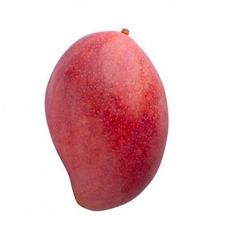 Плод манго, изолированный на белом фоне
