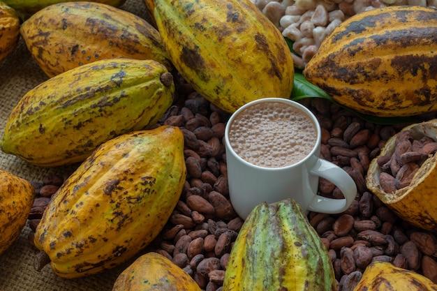 Какао-бобы и какао-фрукты на деревянном
