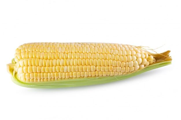 Свежая сладкая кукуруза на белом фоне