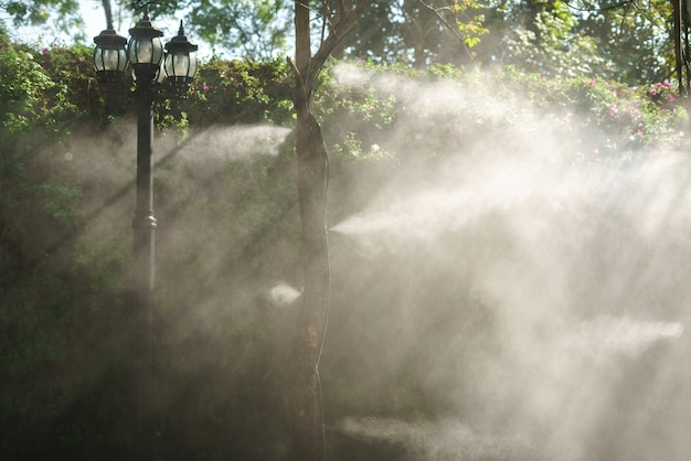 散水用木の霧水噴霧ノズルの設置