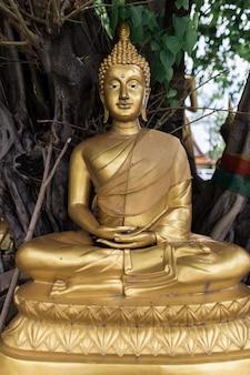 木の下の仏像