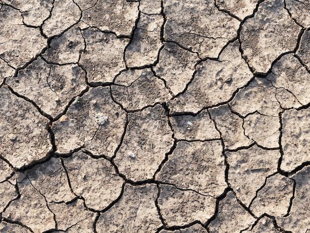 乾砕土の詳細