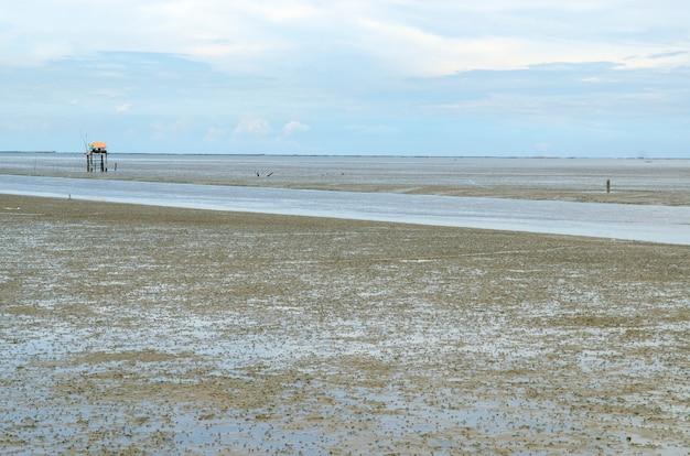 タイの広大な泥だらけのビーチ。
