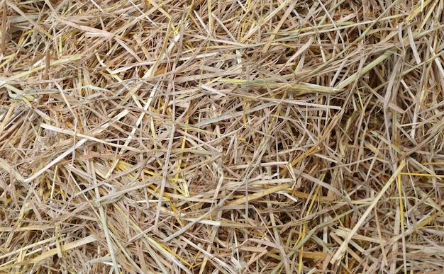 Фон соломы и сена