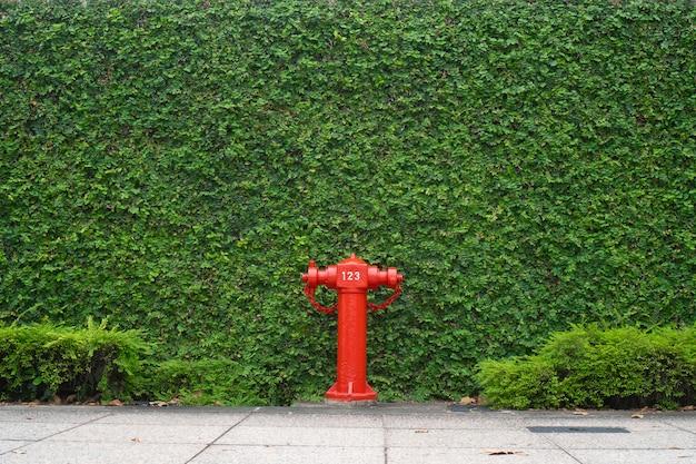 Красная пожарная труба в городе, прогулка