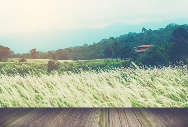タイの熱帯雨林の横にある木製のプラットフォーム