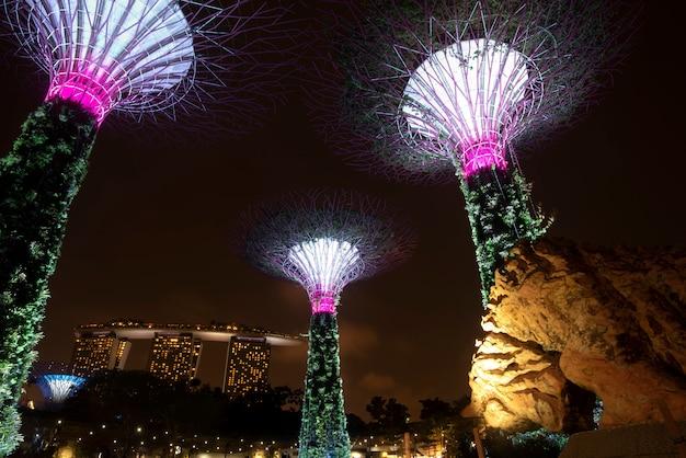ガーデンバイザベイ、シンガポールの夜のスーパーツリーガーデン