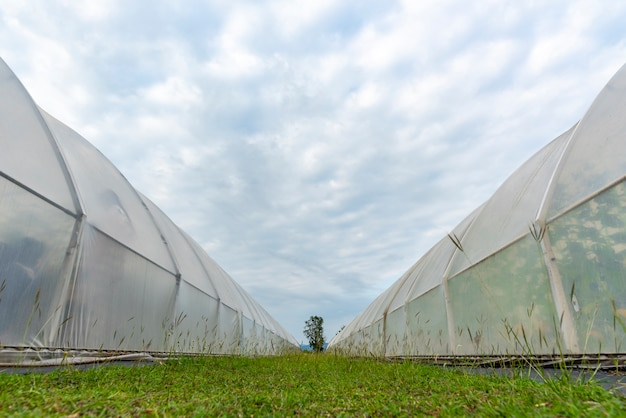 現代の農業産業に関する事業