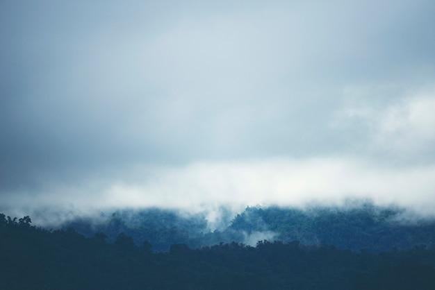 タイの熱帯林の山の上の霧。