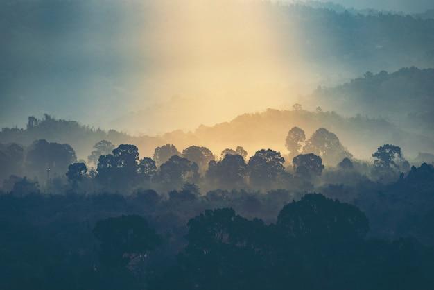 山、森の景色に沈む夕日