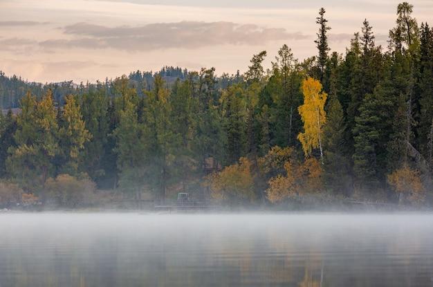 屋外の朝の光の霧と霧、紅葉と高山のカナス湖に浮かぶ