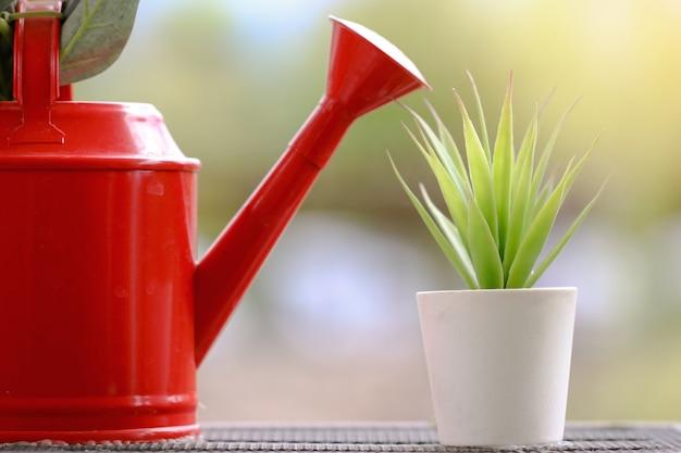 植木鉢が付いている水まきバケツ