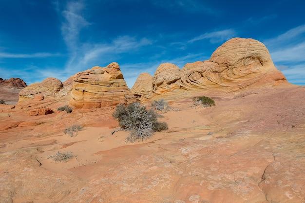 ウェーブ、ナバホ砂岩、アリゾナ州