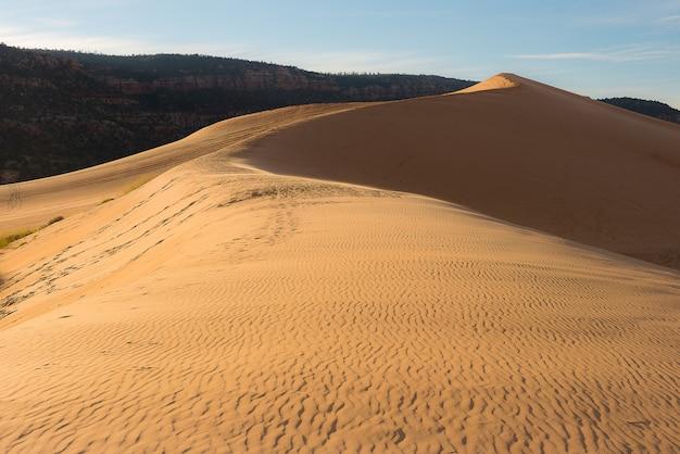 アリゾナ州の砂漠の風景写真