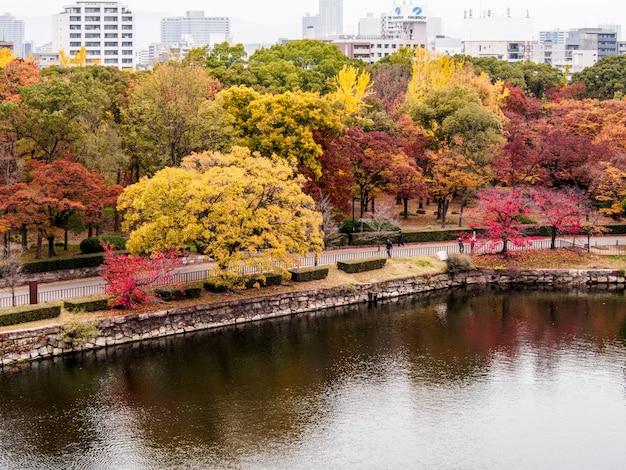 秋の葉のカラフルです