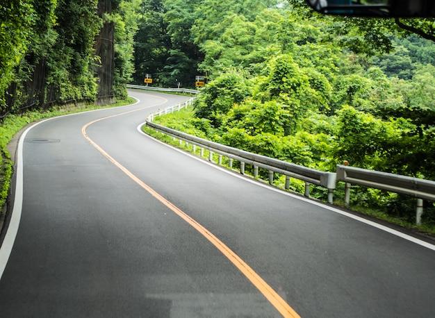 森の木を通る道
