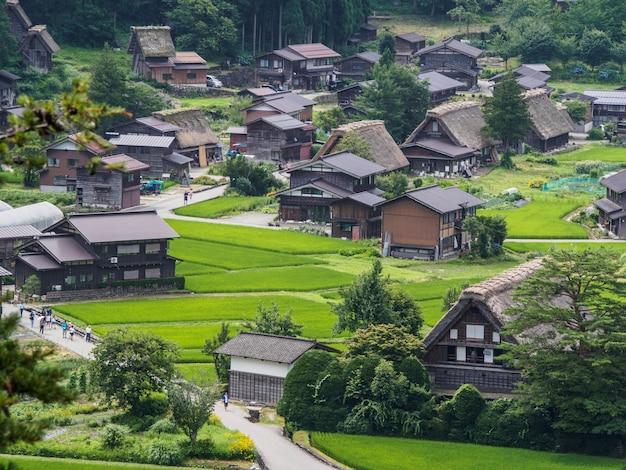 夏の合掌造りの家、白川郷の歴史的な村