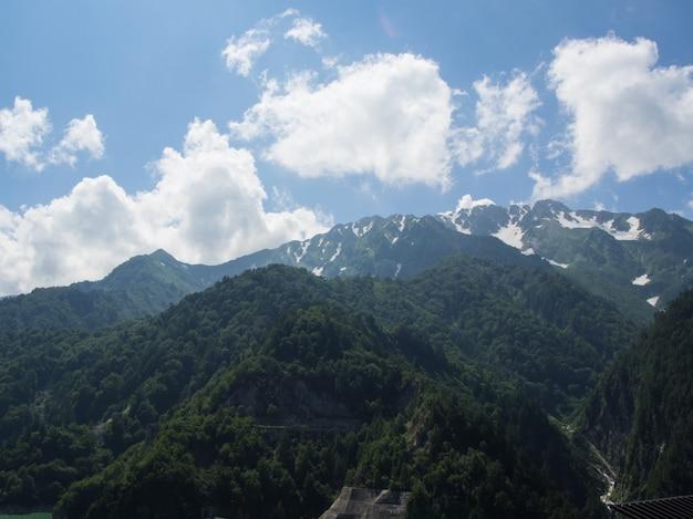 Леса на горе с туманом на голубом небе с облачным фоном